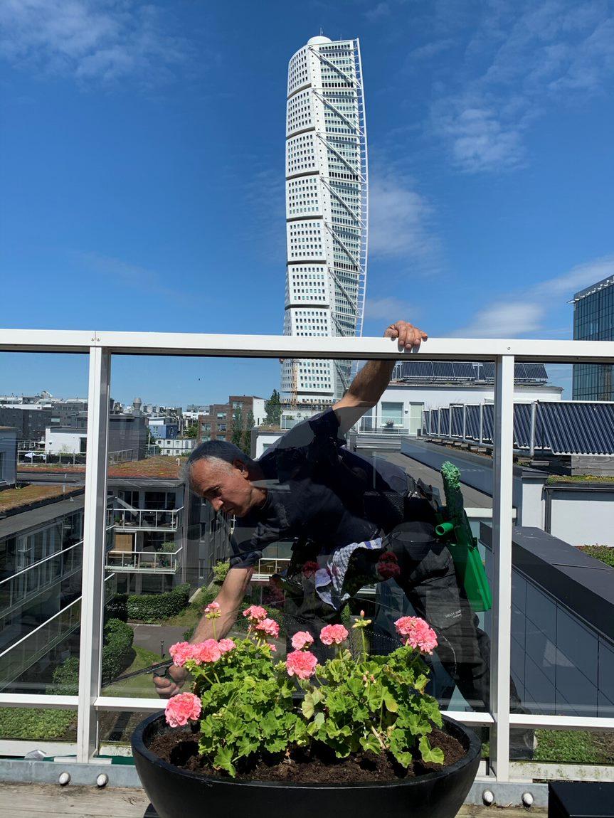 städ-fönsterputs-malmö